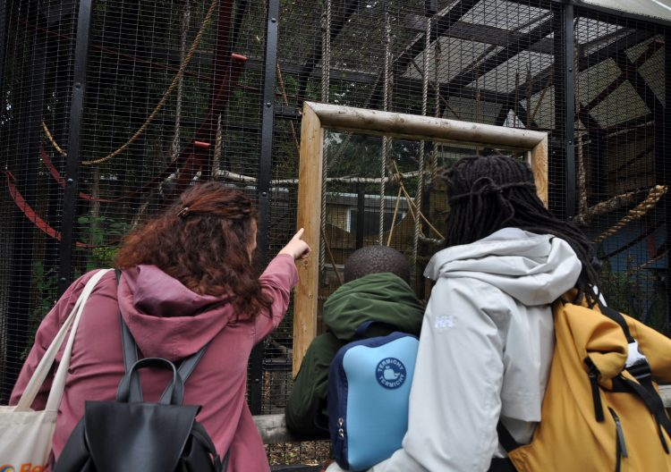 Early Years' trip to Battersea Park Zoo